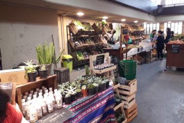 Verduras y Frutas Agroecológicas