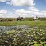 Reabre el Parque Nacional Iberá